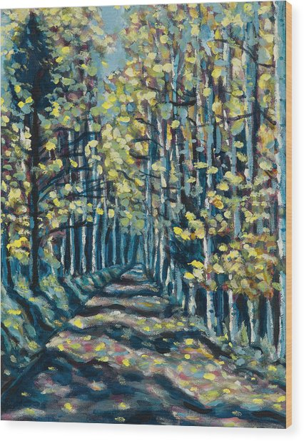 Aspen Path Wood Print by Steve Lawton