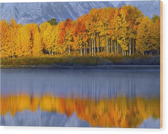 Wood Print featuring the photograph Aspen Reflection by Wesley Aston