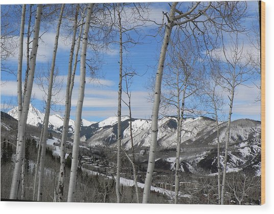 Aspen Trees In Snowmass Wood Print