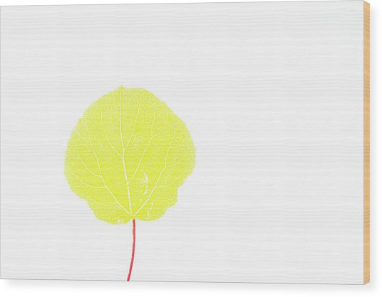 Aspen Yellow Wood Print
