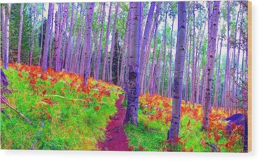 Aspens In Wonderland Wood Print