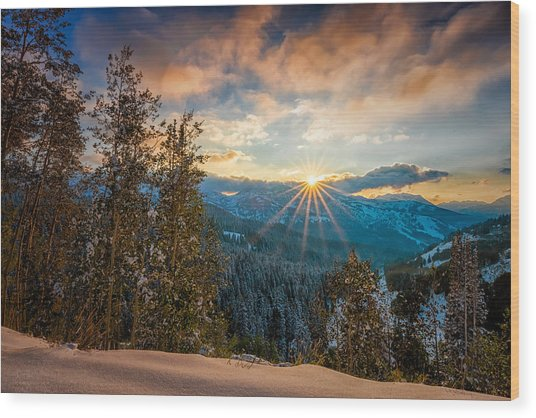 Aspens Sunset After Snowfall Wood Print