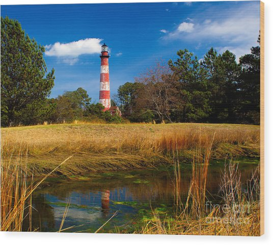Assateague Lighthouse Reflection Wood Print