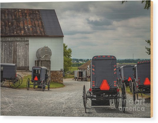 Assorted Amish Buggies At Barn Wood Print