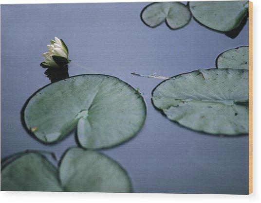 At Claude Monet's Water Garden 2 Wood Print