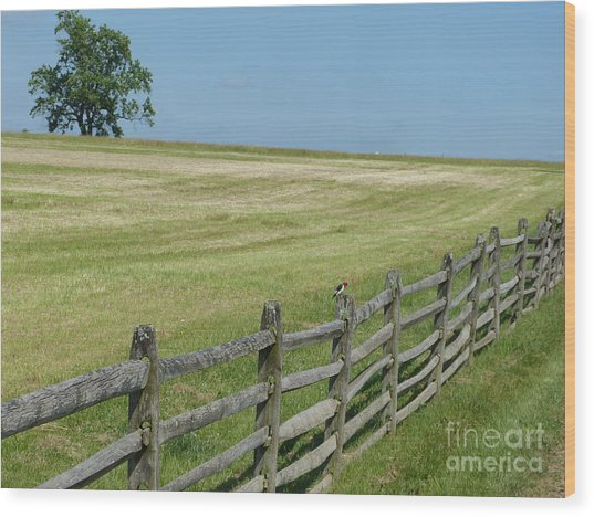 Wood Print featuring the photograph At Gettysburg by Donald C Morgan