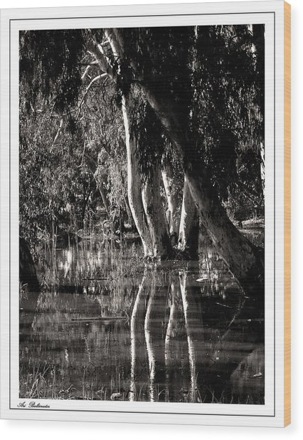 At The Swamp Wood Print