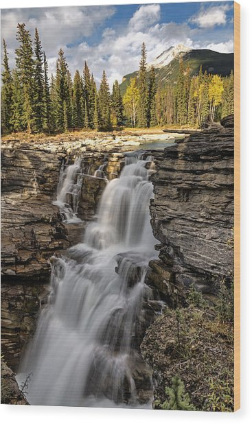 Wood Print featuring the photograph Athabasca Falls by John Gilbert