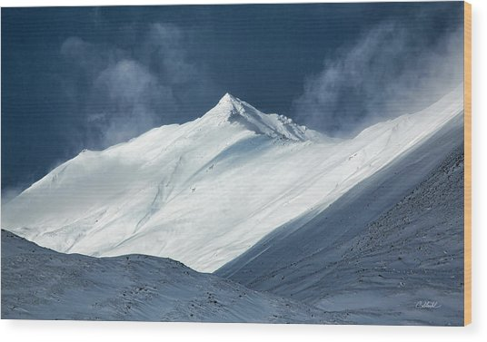 Atigun Pass In Brooks Range Wood Print