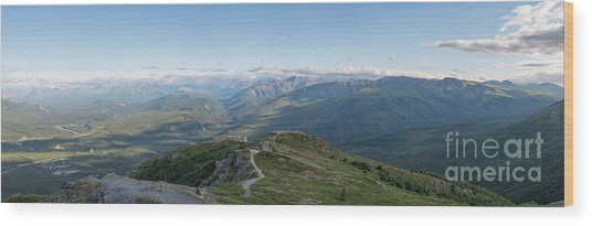 Atop Of Mount Healy  Wood Print