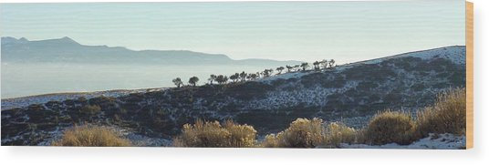 Atop Peavine Mountain Wood Print by Edward Hass