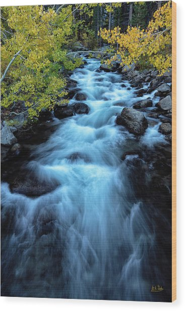 Wood Print featuring the photograph Auatumn On Bishop Creek II by Stuart Gordon