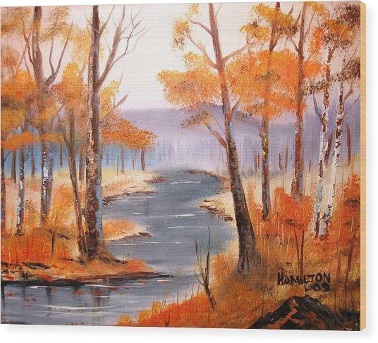 Auburn Forest Wood Print