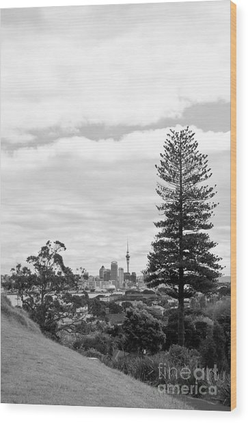 Auckland City New Zealand Wood Print
