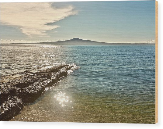Auckland Harbour On A Winter's Afternoon Wood Print