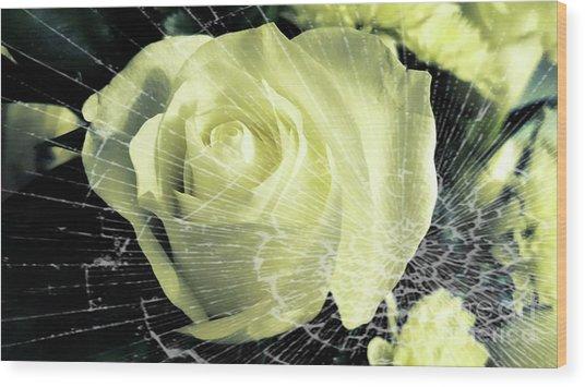 Aunt Edna's Rose Wood Print