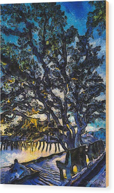 Aunt Kate's Old Live Oak Wood Print