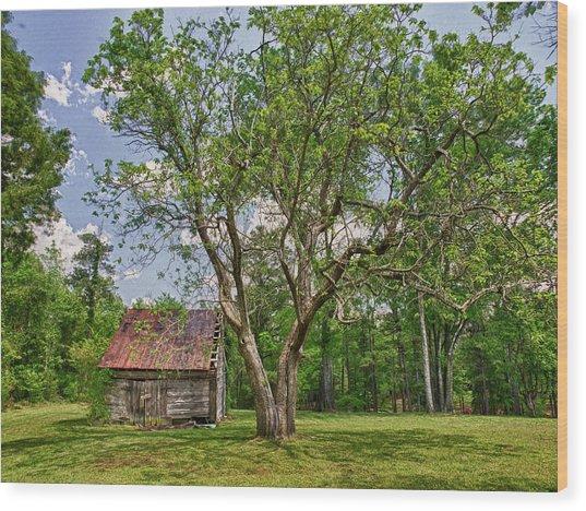 Aunt Lib's Barn Wood Print