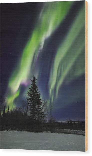 Aurora Grasp Wood Print