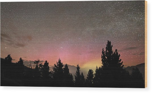 Aurora Borealis Over Mammoth Hot Springs In Yellowstone Np Wood Print by Jean Clark