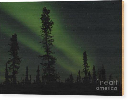 Aurora Borealis The Northern Lights Interior Alaska Wood Print
