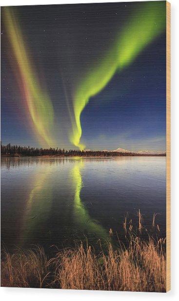 Aurora Glide Wood Print