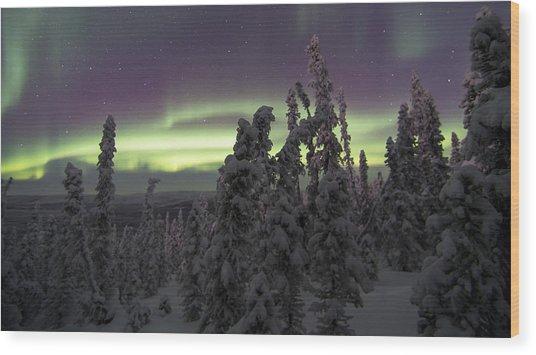 Auroral Horizon Wood Print