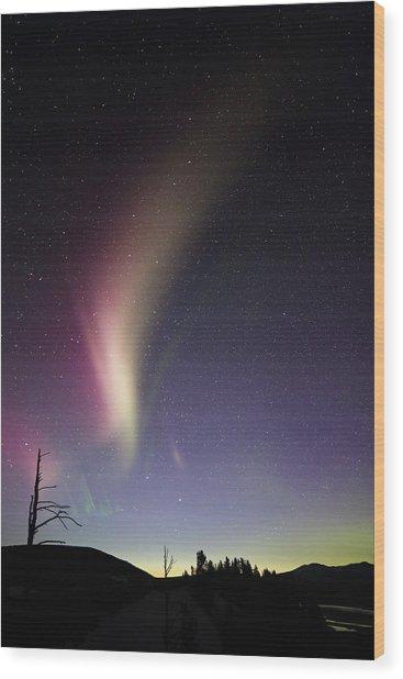 Auroral Phenomonen Known As Steve 2 Wood Print by Jean Clark