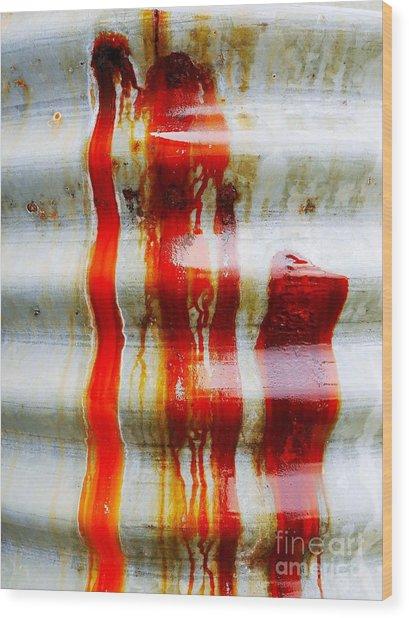 Aussie Galvanised Iron #29 Wood Print