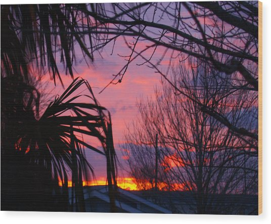 Austin Sunset I Wood Print