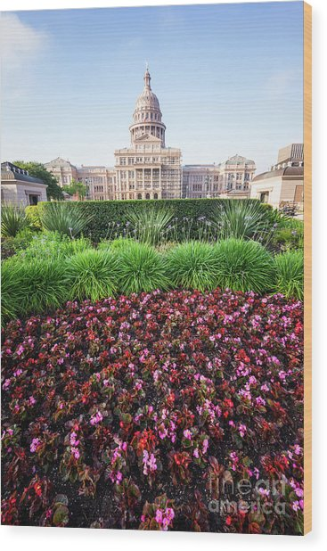 Austin Texas State Capitol Flowers Wood Print by Paul Velgos