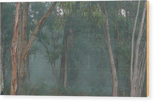 Australian Morning Wood Print