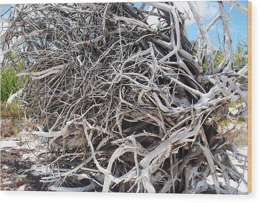 Australian Roots Wood Print by Karla Kernz