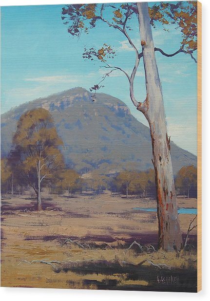 Australian Summer Hartley Wood Print