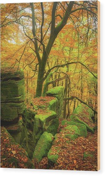Automnal Glow Wood Print
