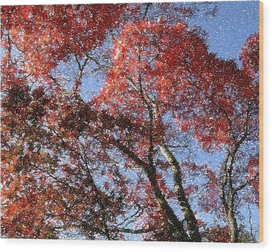 Autum Trees Illustrated Wood Print