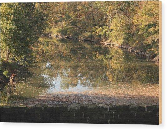 Autumn Afternoon Wood Print by Lone Dakota Photography