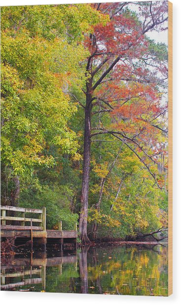 Autumn Along Brices Creek Wood Print