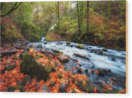 Autumn Along Bridal Veil Wood Print
