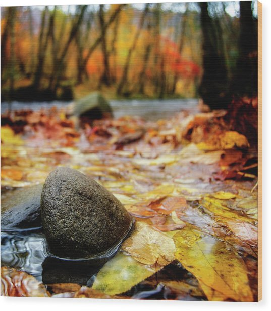 Autumn Along The Oconaluftee River Wood Print
