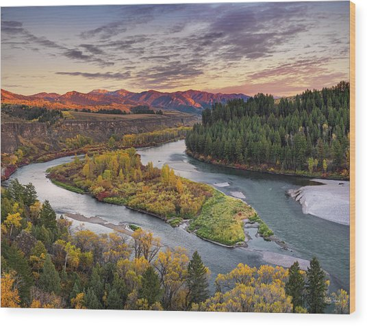 Autumn Along The Snake River Wood Print