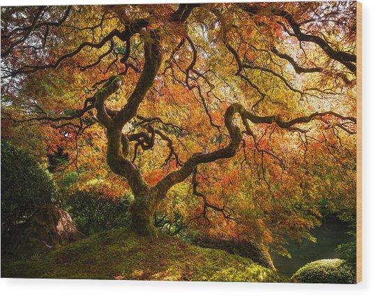 Autumn Arrival Wood Print