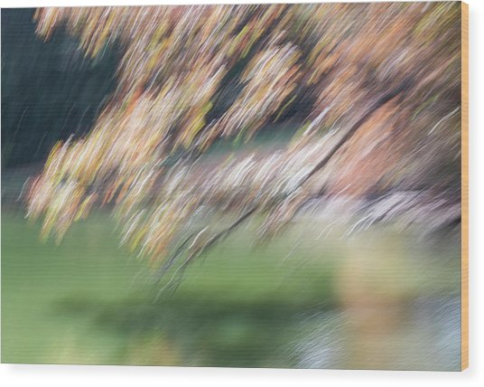 Wood Print featuring the photograph Autumn At Allerton Pond by Deborah Hughes