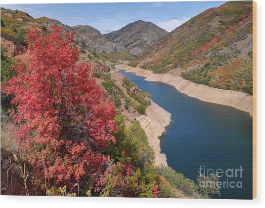 Autumn At Causey Reservoir - Utah Wood Print