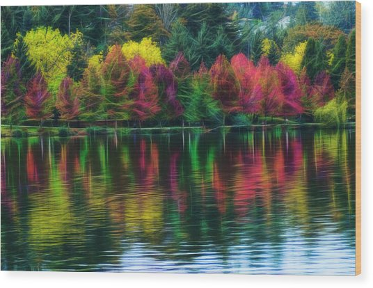 Autumn At Green Lake Seattle Wood Print