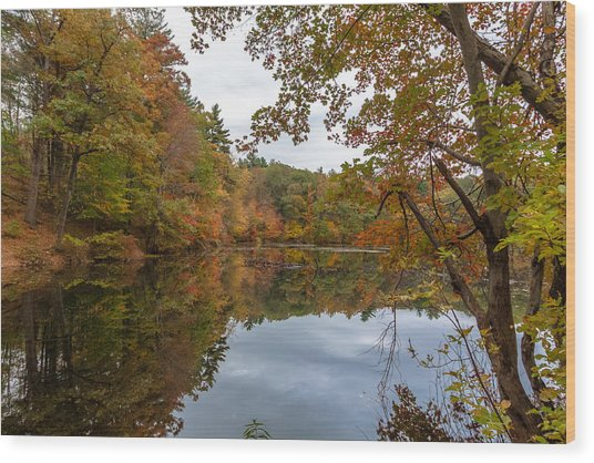 Autumn At Hillside Pond Wood Print