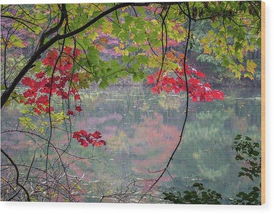 Autumn At Spirit Springs Wood Print