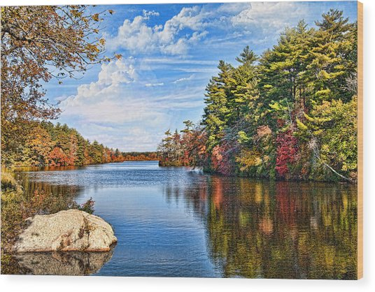 Autumn At The Pond Wood Print