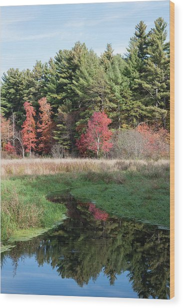 Autumn At The River Wood Print