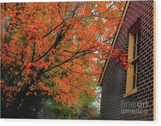Autumn At The Window Wood Print
